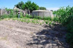 Rh irrigation